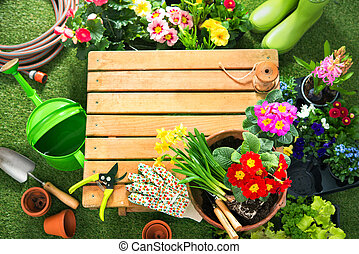 Potting flowers in the garden - Potting spring flowers in...