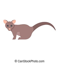 Vector flat style illustration of brushtail possum. Icon for...