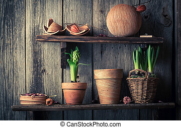 An old wooden shelf with plants and clay pots