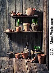 An old shed with old clay pots and gardening tools