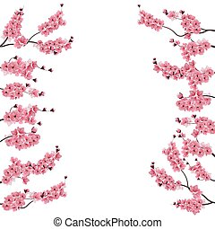 Branches with a pink cherry. Buds. Sakura. From two sides....
