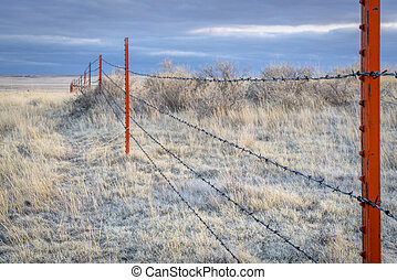 Barbed wire fence in Pawnee Grassland - Barbed wire fence in...