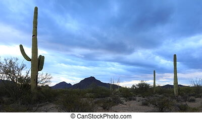 Timelapse of panoramic view in Tucson Mountain Park - A...