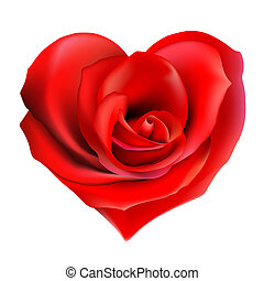 red rose heart - red valentine heart made with rose flower