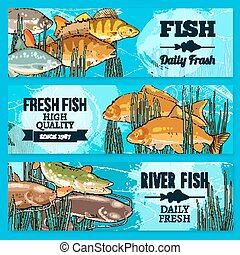Fresh fish vector sketch banners for market - Fresh fish...