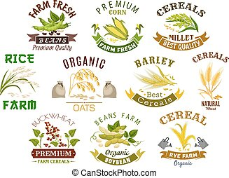 Grain and cereal product vector isolated icons