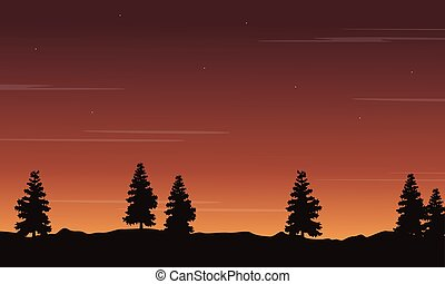 Silhouette of tree at sunset scenery