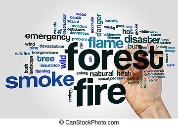 Forest fire word cloud concept