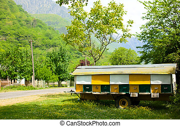 bee hive - Yellow rural hive set for bee colony summer day