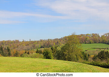 Golf course - Beautiful french landscape with golf course in...