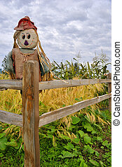Scarecrow in Corn and Squash Patch