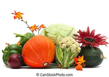 花, 隔離された, 秋, 背景, 野菜, 白