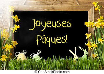 Sunny Narcissus, Egg, Bunny, Joyeuses Paques Means Happy...