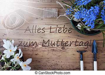 madres, primavera, medios, soleado, flores, muttertag, día,...
