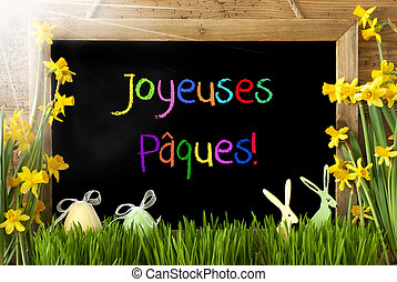 Sunny Narcissus, Egg, Bunny, Colorful Joyeuses Paques Means...