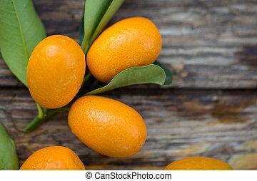 Kumquat - Fresh raw kumquat fruits, the chinese mandarins,...