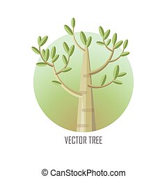 Poplar Tree with Green Leaves. - Poplar tree with green...