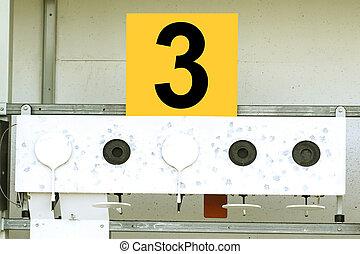 Biathlon . Target sports shooting ? 3