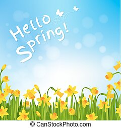 Hello Spring Poster With Narcissus With Gradient Mesh,...