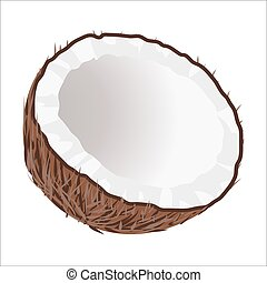 Half of Coconut. Tropical Nut Isolated illustration - Cut in...