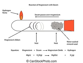 Fully labelled illustration of magnesium reaction with steam...