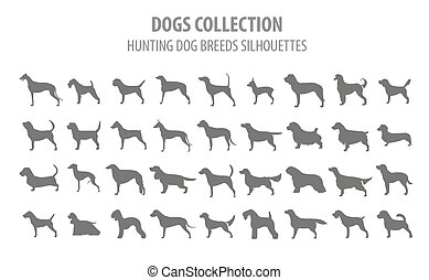 Hunting dog breeds collection isolated on white. Flat style....
