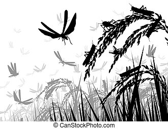 Locusts on rice - Vector silhouette illustration of a swarm...