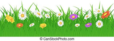 Grass foliage and flowers plants. - Nature background. Grass...