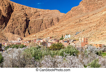Oasis of the Todra River at Tinghir, Morocco - Oasis of the...