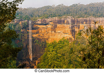 Fitzroy Falls in the Morton National Park. New South Wales....