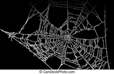 Dusty spider web - Old unused dusty spider web in high...