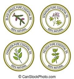 Set of essential oil labels black spruce, geranium, cinnamon, m