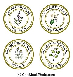 Set of essential oil labels sage, vanilla, chamomile,...