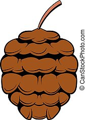 Cedar cone icon cartoon - Cedar cone icon in cartoon style...