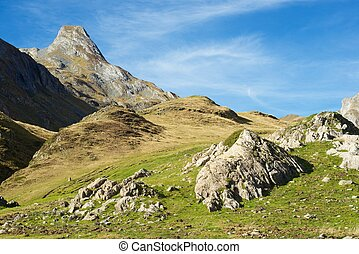 Pyrenees - Landscape in the Aneou, Ossau Valley, Pyrenees...