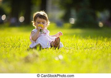Little Girl - One year little girl sniffing flower summer...