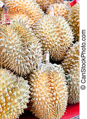 Durian Fruit - Durian fruit, native to the Far East and...