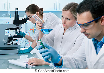 laboratory - group of students working at the laboratory