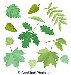 Collection of green leaves. Vector, illustration in flat style isolated on white background EPS10.
