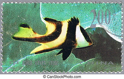 Lutjanus sebae - CHINA - CIRCA 1998: A stamp printed in...