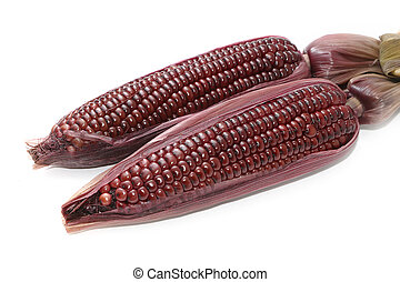 Boiled purple corn on white background
