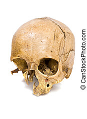 Human Scull - One old jawless Human Scull isolated on white