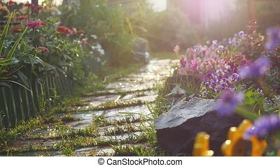 A beautiful path in a flower garden lit by sunlight with lense flare effects on blurred background during sunset in slow motion. 1920x1080
