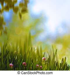 Clower and grass, abstract summer backgrounds with beauty natural bokeh