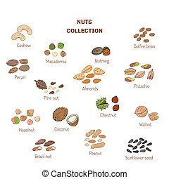 Set of nuts and seeds