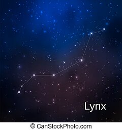 Constellation in the night starry sky