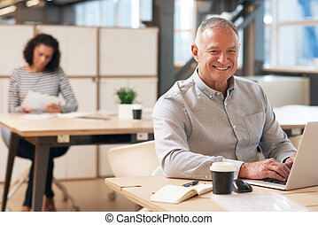 Smiling mature businessman working on a laptop in an office