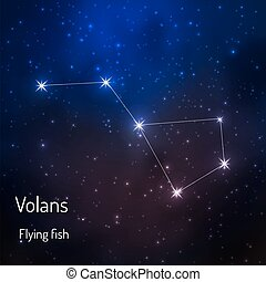 constellation in the night starry sky - Volans Flying fish...