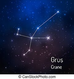constellation in the night starry sky - Grus, crane...