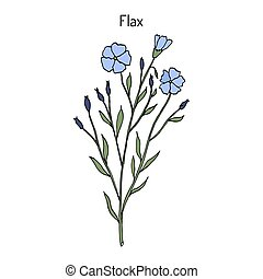 Flax plant with flowers. Hand drawn botanical vector...